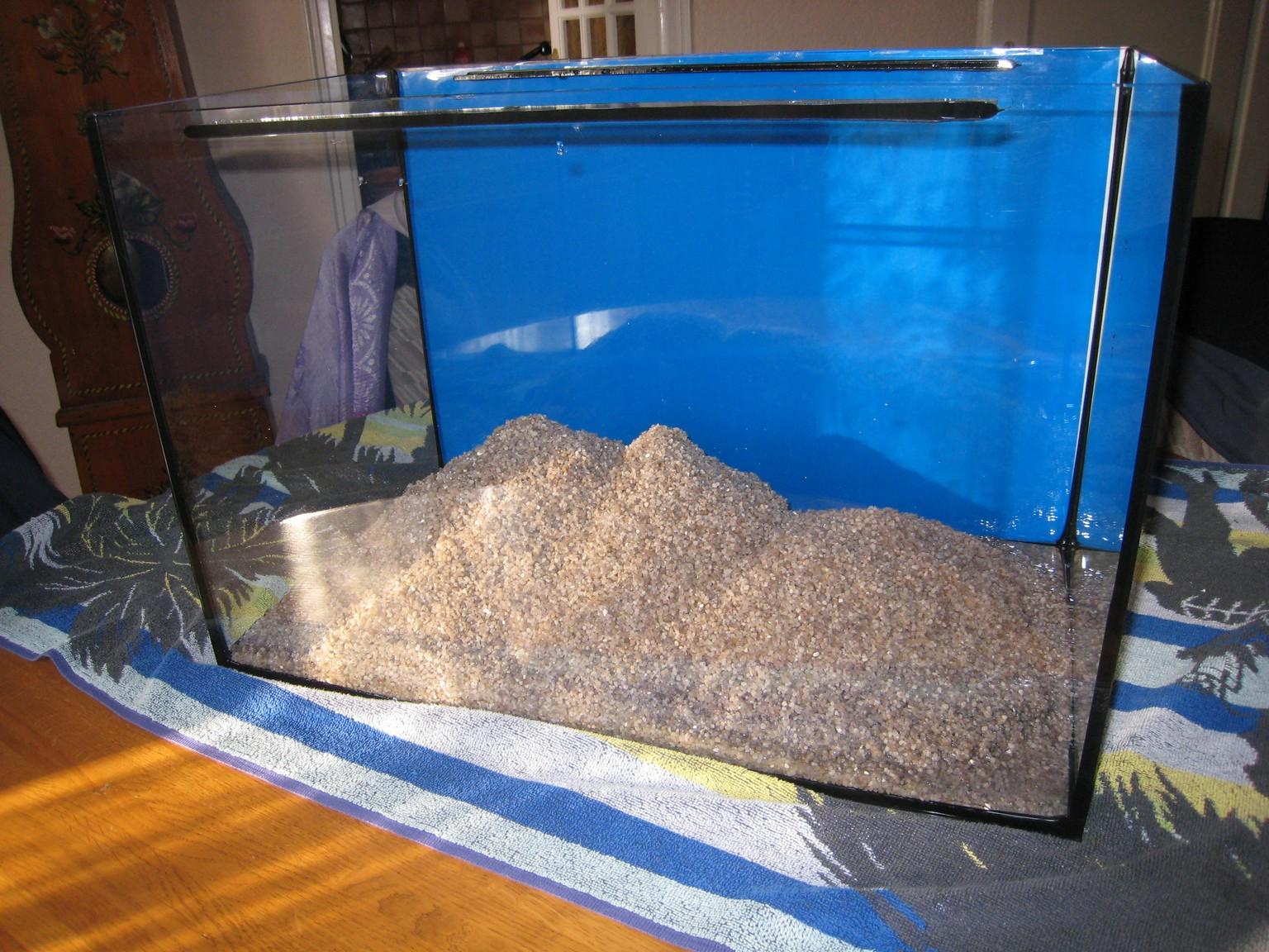 Mon aquarium photos et films for Aquarium bac