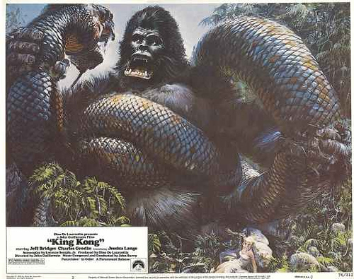 king kong serpent